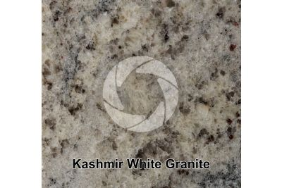 Kashmir White Granite. Tamil Nadu. India. Polished section. 1X
