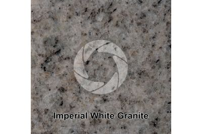 Imperial White Granite. Tamil Nadu. India. Polished section. 1X