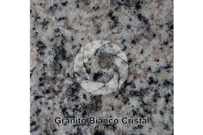 Granito Bianco Cristal. Madrid. Spagna. Sezione lucida. 1X
