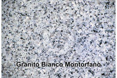 Granito Bianco Montorfano. Piemonte. Italia. Sezione lucida. 2X