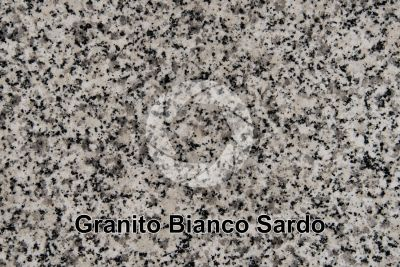 Granito Bianco Sardo. Sardegna. Italia. Sezione lucida