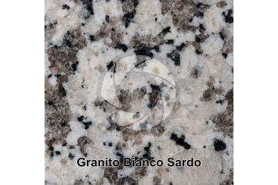 Granito Bianco Sardo. Sardegna. Italia. Sezione lucida. 1X