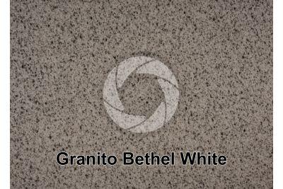 Granito Bethel White. Bethel. Vermont. USA. Sezione lucida