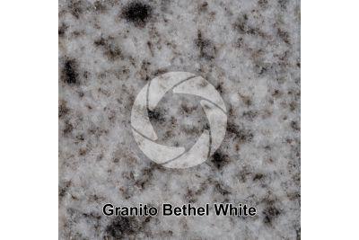 Granito Bethel White. Bethel. Vermont. USA. Sezione lucida. 1X
