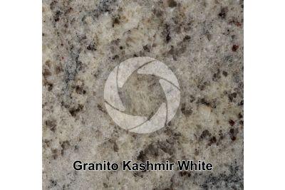 Granito Kashmir White. Tamil Nadu. India. Sezione lucida. 1X