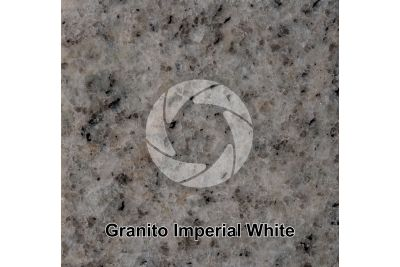Granito Imperial White. Tamil Nadu. India. Sezione lucida. 1X