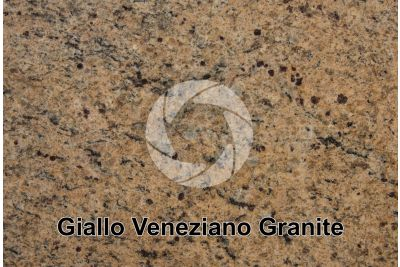 Giallo Veneziano Granite. Brazil. Polished section