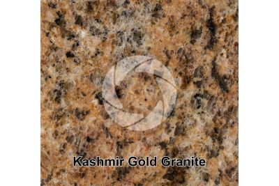 Kashmir Gold Granite. Tamil Nadu. India. Polished section. 1X