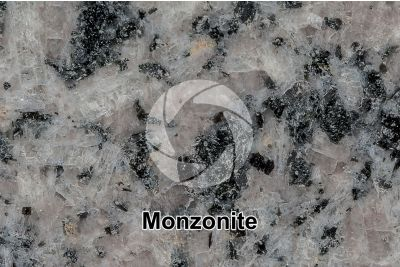Monzonite. Polished section. 2X