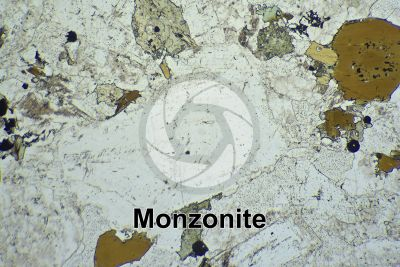 Monzonite. Thin section in plane polarized light. 32X