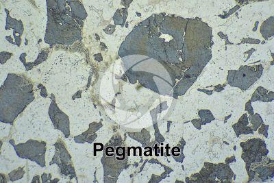 Pegmatite. Sezione sottile in luce polarizzata. 32X