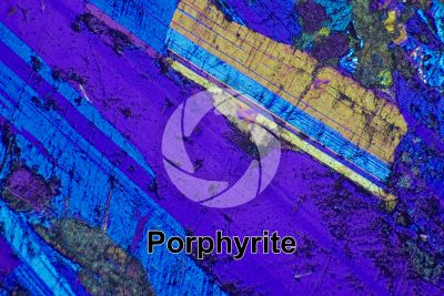 Porphyrite. Thin section in cross polarized light with lambda filter. 32X