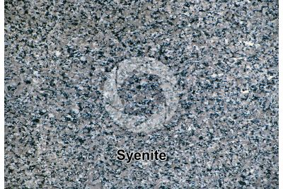 Syenite. Balma. Piedmont. Italy. Polished section. 1X