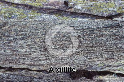Argillite