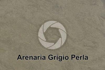 Arenaria Grigio Perla. Toscana. Italia. Sezione lucida