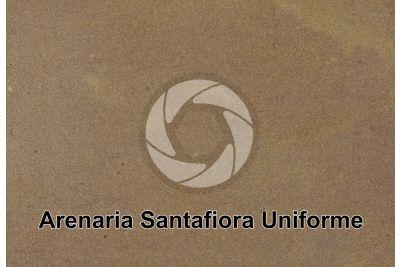 Arenaria Pietra Santafiora Uniforme. Manciano. Toscana. Italia. Sezione lucida