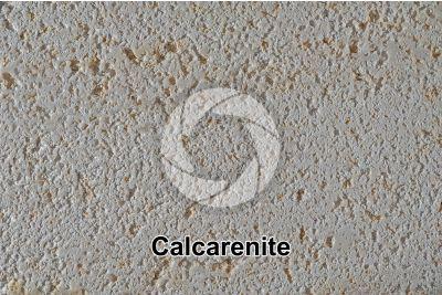 Calcarenite. Lecce. Apulia. Italy. 1X