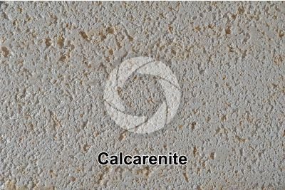 Calcarenite. Lecce. Puglia. Italia. 1X
