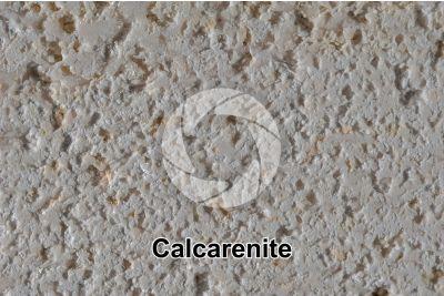 Calcarenite. Lecce. Puglia. Italia. 2X