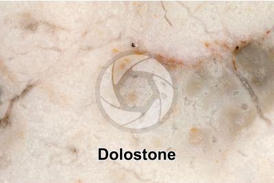 Dolostone. Polished section. 2X