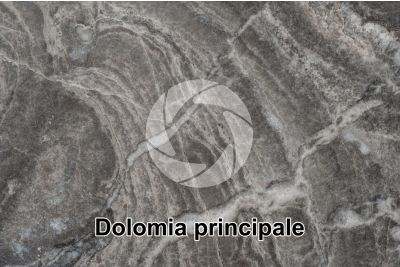 Dolomia principale. Castro. Lombardy. Italy. Polished section. 2X