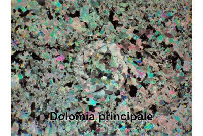 Dolomia principale. Castro. Lombardy. Italy. Thin section in cross polarized light with lambda filter. 32X