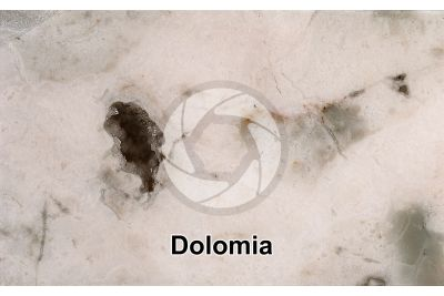Dolomia. Sezione lucida. 1X
