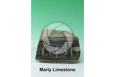 Marly Limestone