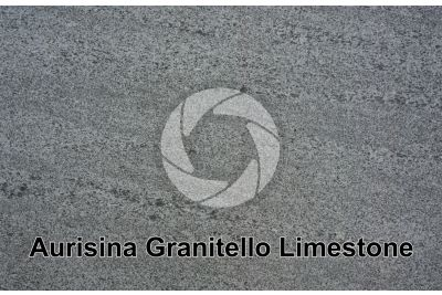 Aurisina Granitello Limestone. Aurisina. Friuli Venezia Giulia. Italy. Polished section