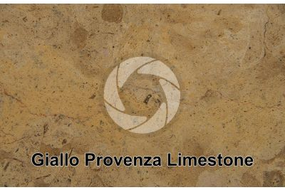 Giallo Provenza Limestone. Morocco. Polished section