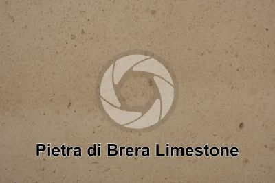 Pietra di Brera Limestone. Italy. Polished section