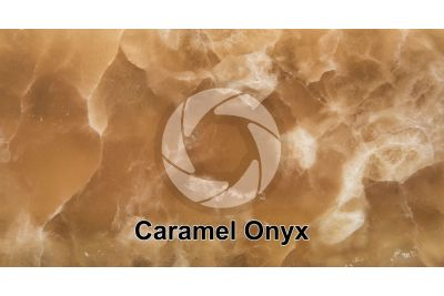 Caramel Onyx. Turkey. Polished section. 1X