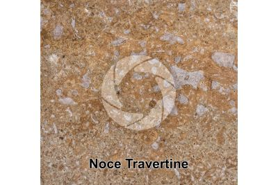 Noce Travertine. Lazio. Italy. Polished section. 1X