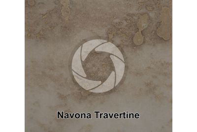 Navona Travertine. Lazio. Italy. Polished section. 1X
