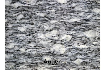 Augen. Polished section. 1X