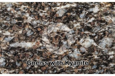 Gneiss with Kyanite. Sole Valley. Trentino Alto Adige. Italy. Polished section. 1X