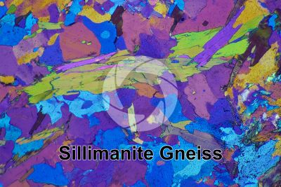 Sillimanite Gneiss. Mount Gavia. Italy. Thin section in cross polarized light with lambda filter. 32X
