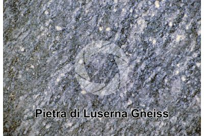 Gneiss. Pietra di Luserna. Piedmont. Italy. Polished section. 1X