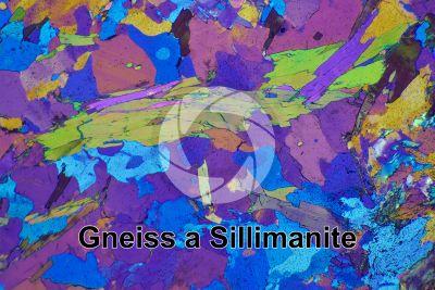 Gneiss a Sillimanite. Monte Gavia. Italia. Sezione sottile in luce polarizzata a Nicol incrociati con filtro lambda. 32X