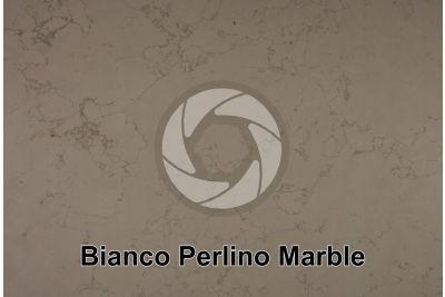 Bianco Perlino Marble. Asiago. Veneto. Italy. Polished section
