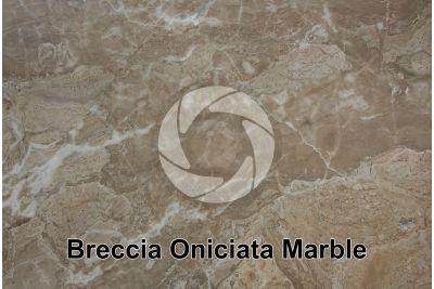 Breccia Oniciata Marble. Brescia. Lombardy. Italy. Polished section