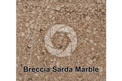 Breccia Sarda Marble. Orosei. Sardinia. Italy. Polished section. 1X