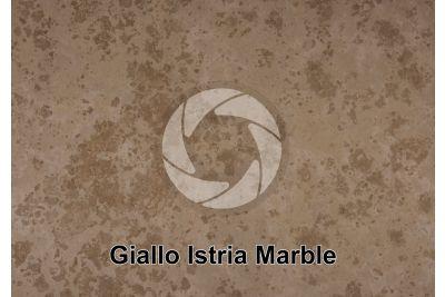 Giallo Istria Marble. Istria. Croatia. Polished section