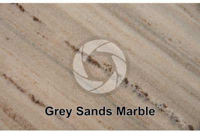 Grey Sands Marble. Piedmont. Italy. Polished section