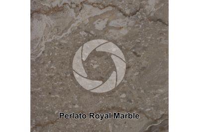 Perlato Royal Marble. Sinai. Egypt. Polished section. 1X