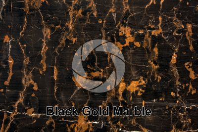 Black Gold Marble. Balochistan. Pakistan. Polished section