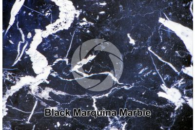 Black Marquina Marble. Basque Country. Spain. Polished section