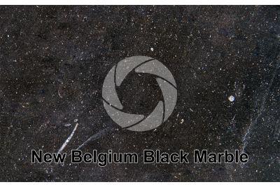 New Belgium Black Marble. Belgium. Polished section