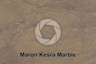 Maron Kesra Marble. Kesra. Tunisia. Polished section
