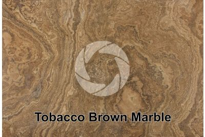 Tobacco Brown Marble. Ontario. Canada. Polished section